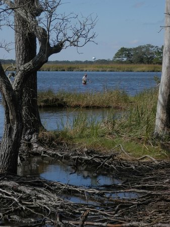 Nags Head Woods Ecological Preserve: fisherman in the sound