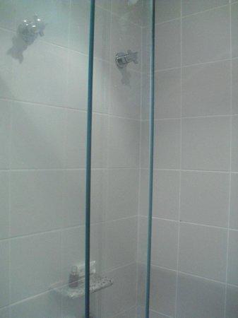 Ipanema Inn: El área de la ducha es muy pequeña. Hacen falta más repisas.