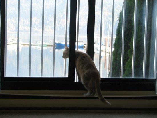 Oceanfront Suites at Cowichan Bay: pet-friendly room
