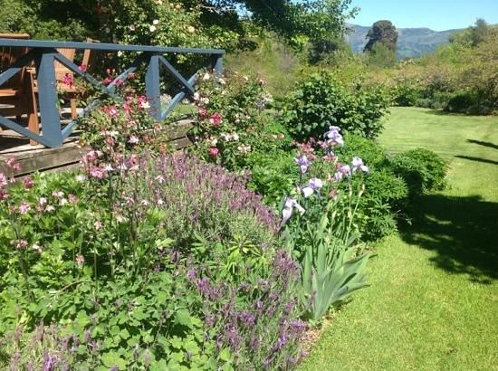 Potters Croft Garden : 2+ acres of garden to wander through