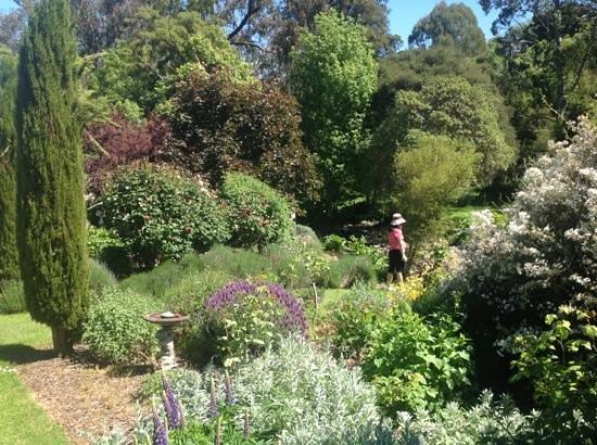 Potters Croft Garden : more garden