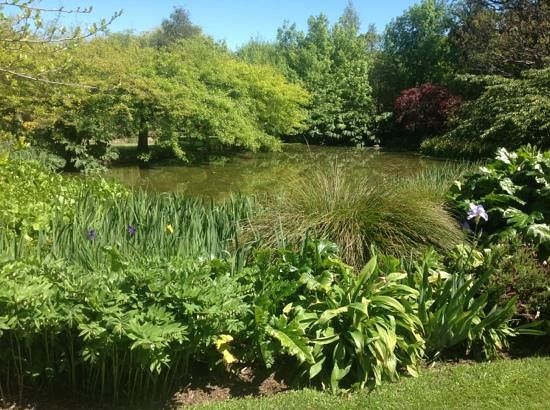 Potters Croft Garden: pond view