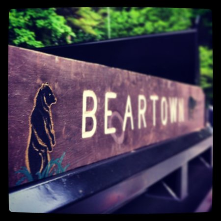 Beartown State Forest