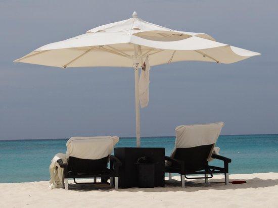 Bucuti & Tara Beach Resort Aruba: The view from Paradise...