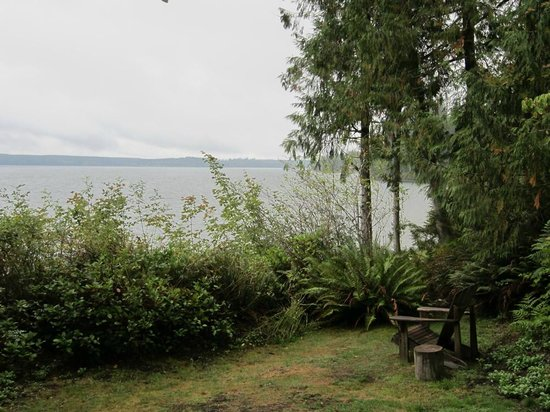 Lochaerie Resort: Lake Quinault next to Storm King Cabin