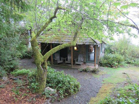 Lochaerie Resort: Storm King Cabin