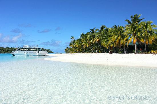 Bishops Cruises