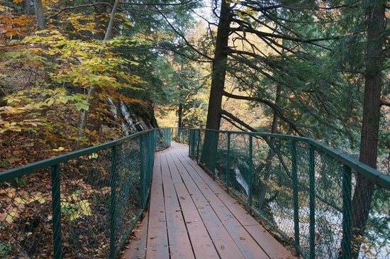 Parc de la Gorge de Coaticook: Part of Trail - not all of the trail is like this.  Most of it is more trail and less manicured.