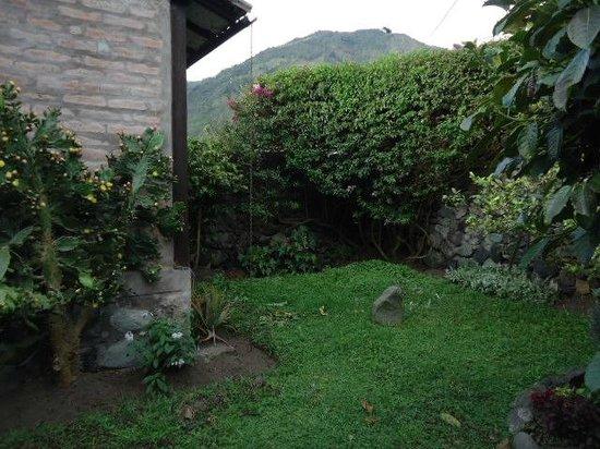 HOSPEDAJE HIGUERON: jardin