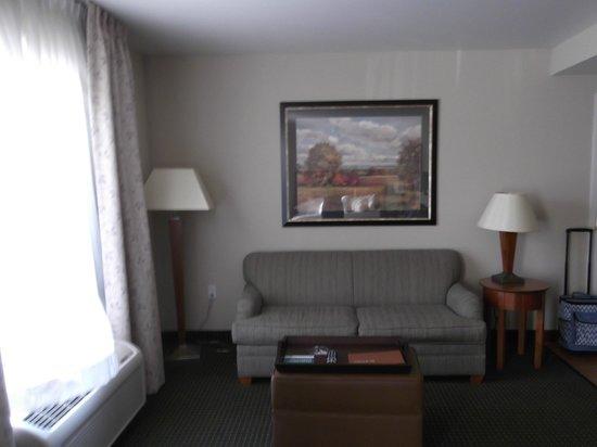 Homewood Suites St. Louis-Riverport: Living Room area