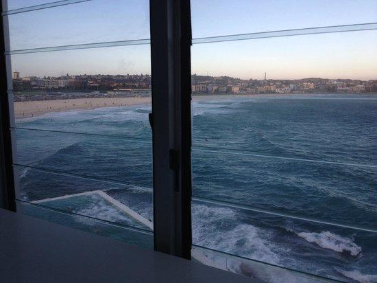 bondi icebergs pool - sydney - picture of icebergs dining room