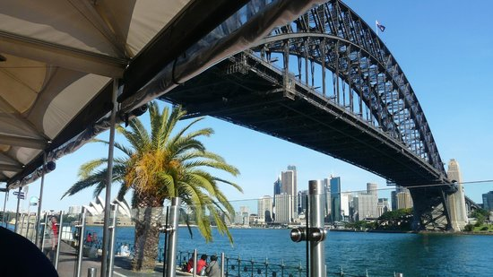 Ripples at Milsons Point: View from Ripples