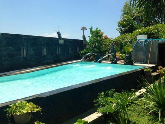 The Djoyo Bed & Breakfast: Pool