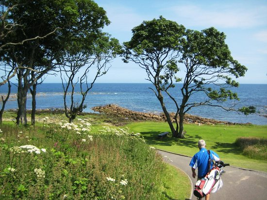 Kingsbarns Golf Links: Heading down to the signature hole!