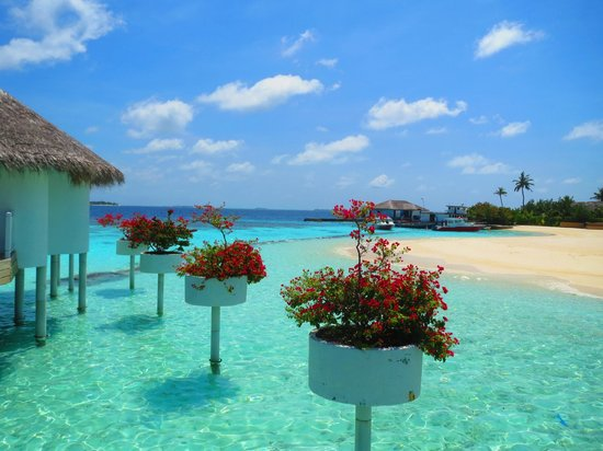 Centara Grand Island Resort & Spa Maldives: Beach