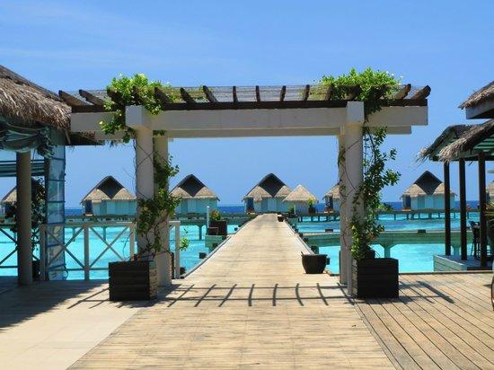 Centara Grand Island Resort & Spa Maldives: Sunset Water Villas