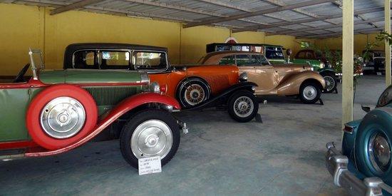 Auto World Vintage Car Museum: Cars - XI