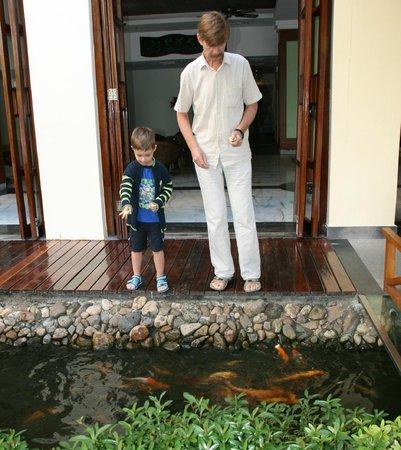 South China Hotel: Кормление рыб
