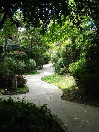 Yaiya Hua Hin : Resort
