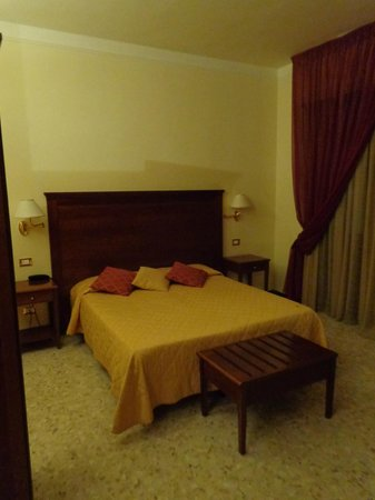Hotel Alessandro della Spina: Room