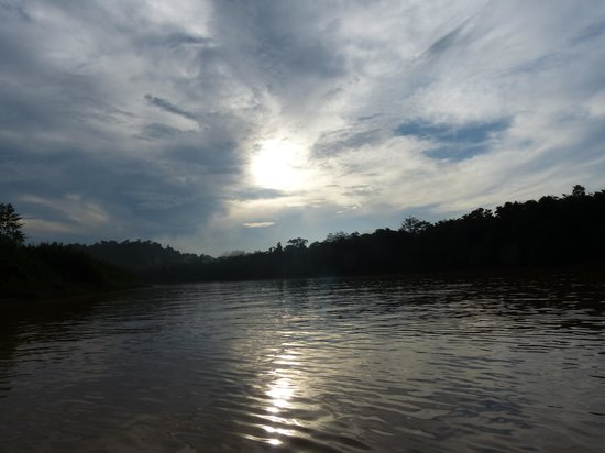 Kinabatangan Jungle Camp: early morning