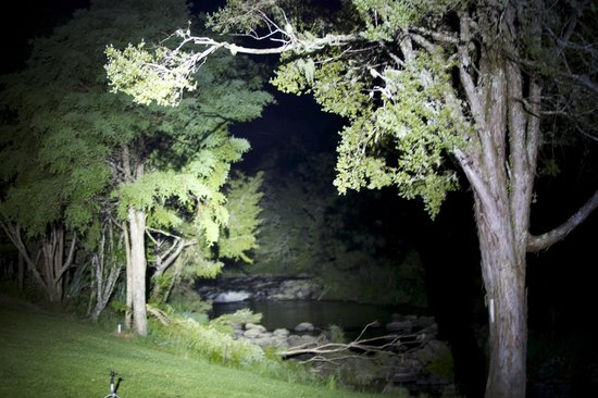 Puketotara Lodge: Trout stream at night
