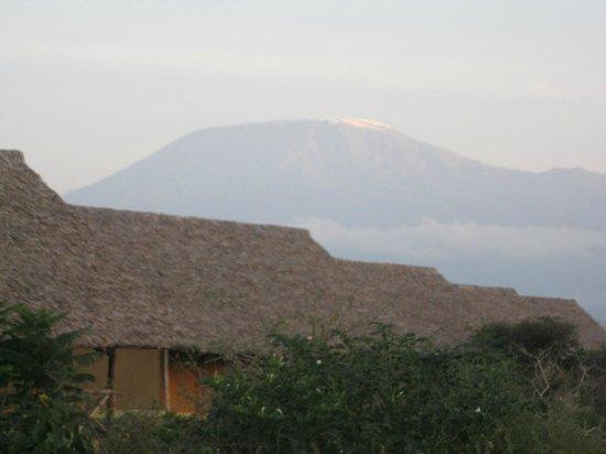 AA Lodge Amboseli: Views form the tents
