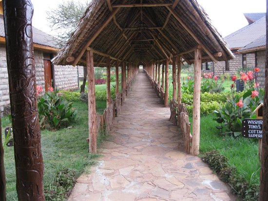 AA Lodge Amboseli: Walk path to the rooms