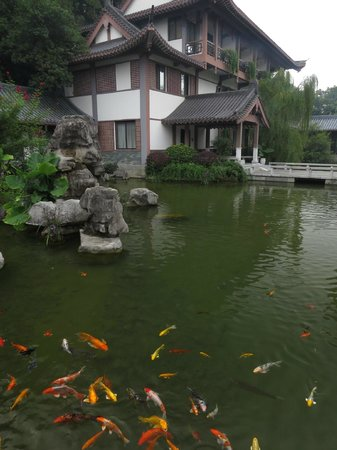 Guilinyi Royal Palace: Inside the hotel compound