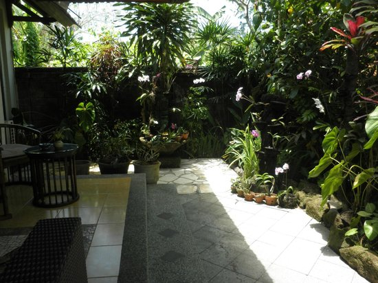 Bali Spirit Hotel and Spa : Orchid garden outside unit