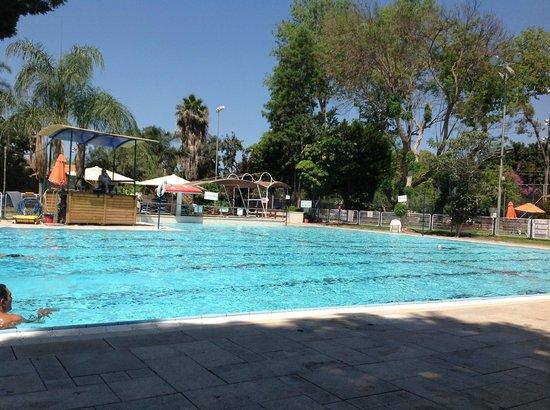 Kfar Maccabiah Hotel & Suites: бассейн