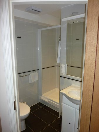 Comfort Inn Buckingham Palace Road: Baño 1
