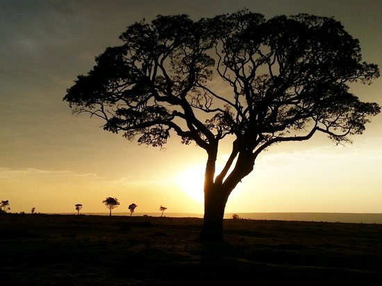 Royal Mara Safari Lodge : Returning from a night drive - sensational sunset