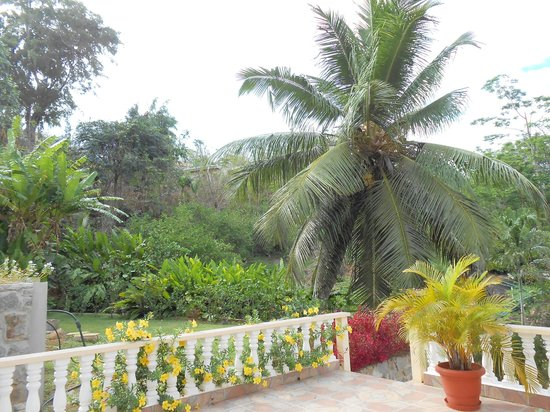 East Horizon Self-Catering Apartments: green lush garden surrounding terras
