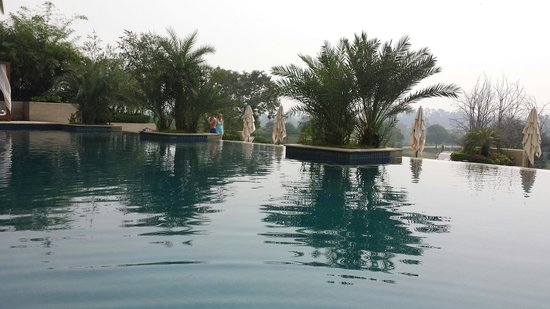 Vivanta by Taj, Surajkund : The pool .