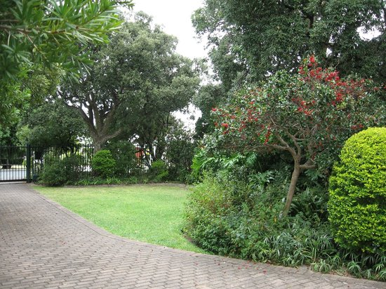 168 Sixth Street Voelklip: Garden