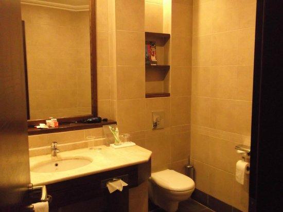 Dead Sea Spa Hotel: Ванная комната