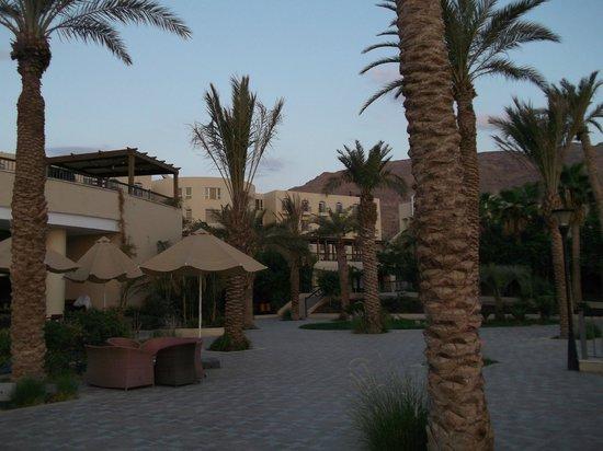 Dead Sea Spa Hotel: Территория
