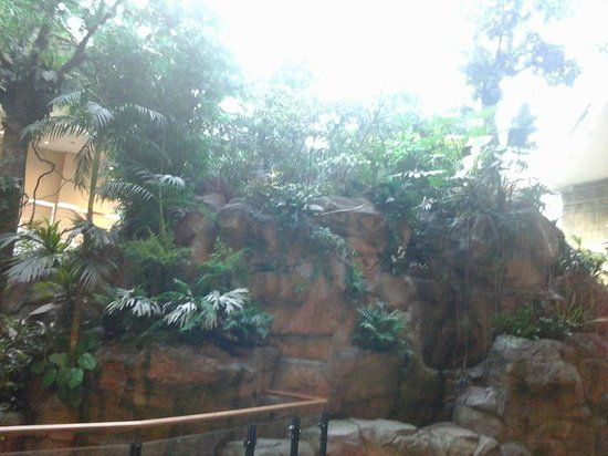 Travelodge Hotel Bankstown Sydney: Indoor rainforest