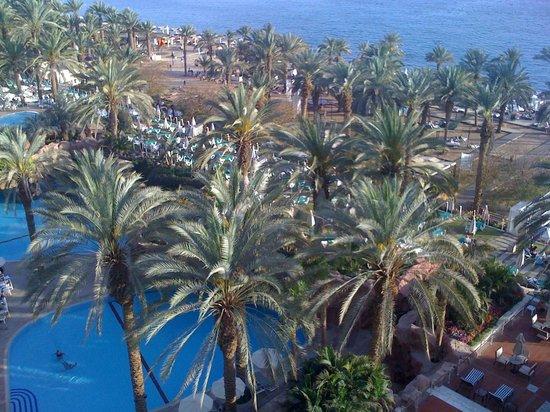 Royal Beach by Isrotel Exclusive Collection: La piscine, les jardins et le bord de mer