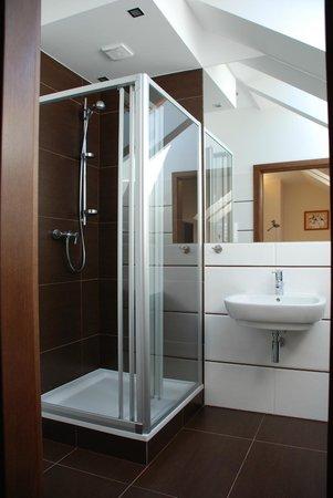 Hotel Olecki: Bathroom