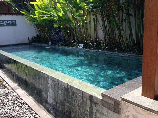 Luwak Ubud Villas: Swimming pool