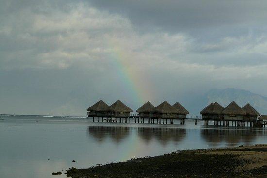 Pension de la Plage Tahiti : Plage à 100 m de la pension (coté pilotis du Méridien)