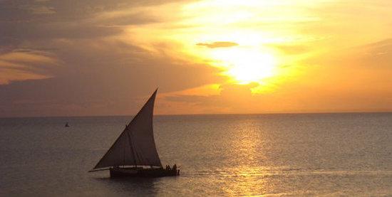 Savanna and Ocean: Sunset