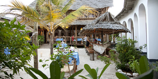 Savanna and Ocean : The Hotel and Courtyard