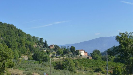 Villa il Castellaccio: View of Villa and property looking back while walking to Lucolena