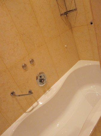 Crowne Plaza Padova: Ванная вместо душевой кабины
