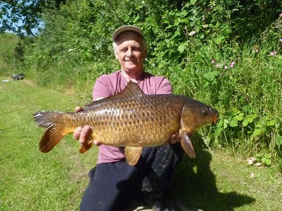 Pensagillas Coarse Fishing Lake: Beautiful carp caught at Pensagillas
