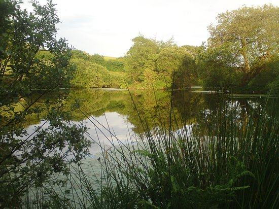 Grampound, UK: The Lake