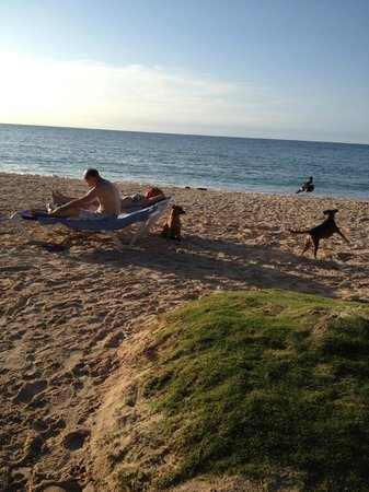 Cocoplum Beach Hotel : Praia de Cocoplum